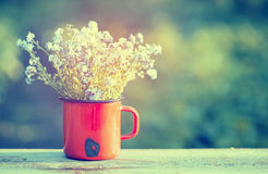 Retro summer background with forget me not flowers Royalty Free Stock Photo