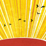 Retro Sunrays Background. Vector, EPS10 Stock Images