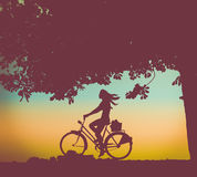 Retro Sunset Cyclist royalty free stock photography