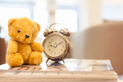 Retro Teddy Bear toy alone with alam clock. Stock Photo