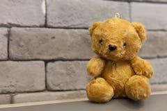 Retro Teddy Bear toy Stock Photos