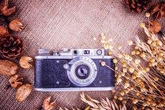 Retro tela da imballaggio delle spighette del grano della macchina fotografica della foto Fotografia Stock Libera da Diritti