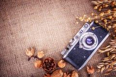 Retro tela da imballaggio delle spighette del grano della macchina fotografica della foto Fotografie Stock