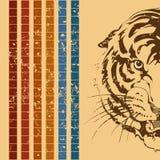 Retro a tiger Royalty Free Stock Photo