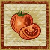 Retro tomaat stock illustratie