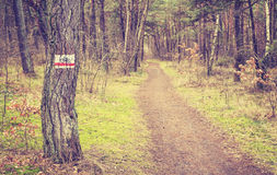 Retro toned bike trail sign by forest path. Stock Images