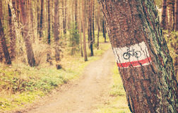 Retro toned bike trail sign painted on a tree in forest Stock Photos