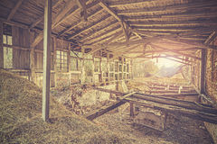 Retro toned ruins of abandoned industrial building Royalty Free Stock Photo