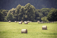 Retro toned summer field with hay bales. Royalty Free Stock Photography