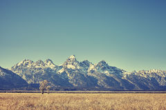 Retro toned view of Grand Teton mountain range, Wyoming, USA Royalty Free Stock Images