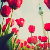 Retro torre di sguardo TV, Berlino Immagine Stock Libera da Diritti