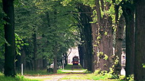 Retro Tram (1909-1910 model) enters an ancient avenue of trees. Riga's Retro tram is a 1909-1910 model fully restored in 1982, based on old drawings and photos stock video footage