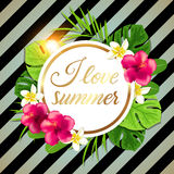 Retro tropical background Royalty Free Stock Image
