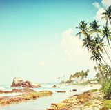 Retro tropical beach Royalty Free Stock Photography