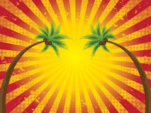 Retro tropical sunset Royalty Free Stock Photo