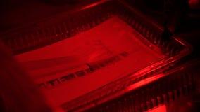 Retro tryckfoto i mörkrummet Mörkrum som framkallar filmen och som skapar foto genom att använda olika kemikalieer Uttorkningfoto arkivfoton