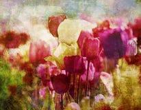 Retro tulipany w wiośnie obrazy royalty free