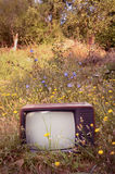 Retro TV on a Meadow. Retro Design TV on a Meadow stock image
