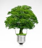 Retro uitstekende gloeilamp met groene boom op bovenkant op witte achtergrond stock afbeeldingen