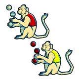 Retro uitstekende prestaties van stijlcircus opgeleide die wilde dieren op wit worden geïsoleerd De aap jongleert met Royalty-vrije Stock Afbeeldingen