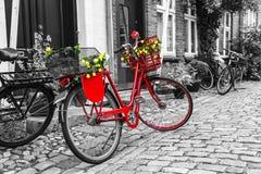 Retro uitstekende rode fiets op keistraat in de oude stad Stock Afbeelding