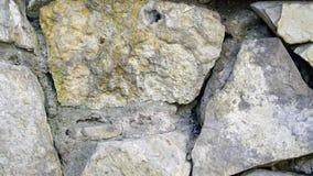 Retro van de steenmuur textuur als achtergrond Stock Afbeelding