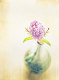 Retro vase with lilac blossom, romantic card Royalty Free Stock Images