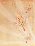 Retro vecchio fondo di carta beige di autunno Fotografia Stock