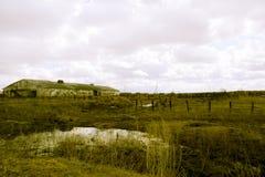 Retro- verlassener Bauernhof Stockbild