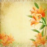 Retro vintage background with lily. Retro vintage romantic background with lily Royalty Free Stock Photos