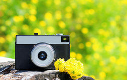 Retro vintage camera with yellow flowers over sunny summer bokeh Stock Images
