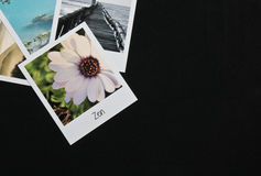 Retro vintage four instant photo frames cards on black background with images of nature Royalty Free Stock Photos
