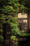 Retro vintage house entrance, ivy Royalty Free Stock Photo