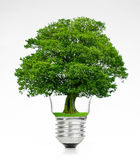 Retro vintage light bulb with green tree on top on white background. Energy saving concept Stock Images