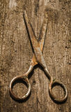 Retro vintage scissors on the wooden background Stock Image