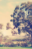 Retro vintage style Australian landscape Royalty Free Stock Image