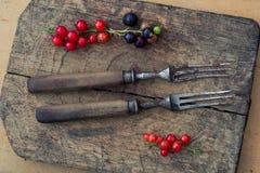 Retro vorken met houten handvatten en een besbes op een oude scherpe Raad Hoogste mening, minimalism Uitstekend Stilleven Royalty-vrije Stock Afbeelding