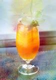 Retro watercolor fruit cocktail Stock Image
