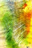 Retro watercolor palm leaves Stock Photos