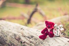Retro Wekker en teddybeer in de tuin stock foto