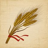 Retro Wheat Stock Photography