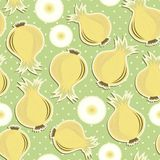 Retro whole onions and slices on polka dots on gre Stock Photo