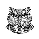 Hip Wise Owl Suit Woodcut Stock Photo