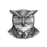 Hipster Owl Suit Woodcut Royalty Free Stock Image