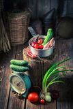 Retro wooden cellar with fresh herbs and vegetables. Rustic theme royalty free stock image