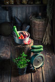 Retro wooden cellar with vegetables and preserves in jars. Rustic theme stock photography
