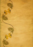 Retro yellow flower border Stock Images