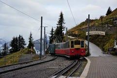 Retro- Zug, der von Wilderswil zu Schynige Platte mit Nebel und erstaunlicher Ansicht des alpinen Waldes als Hintergrund reist Ju Stockbilder