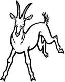 Retroceso con el pie de la cabra Fotografía de archivo libre de regalías