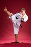 Retroceso del karate Fotografía de archivo